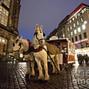Horse Tram Art Print