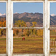 Horses And Autumn Colorado Front Range Picture Window View Art Print by James BO  Insogna