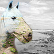 Horses Dream Art Print by Jo Collins