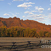 Horses In North Fork Canyon   #4106 Art Print