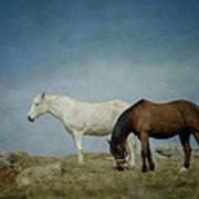 Horses On A Hill Art Print