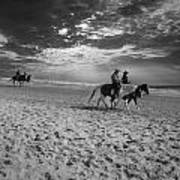Horses On The Beach Bw Art Print