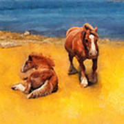 Horses On The Coast Of Brittany Art Print