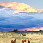 Horses On The Storm 2 Art Print