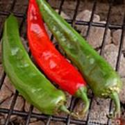 Hot And Spicy - Chiles On The Grill Art Print