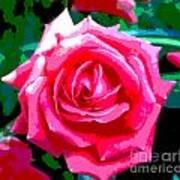 Hot Pink Rose Art Print
