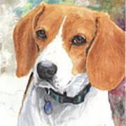 Hound Watercolor Portrait Art Print