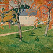 House Among Trees Art Print