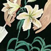 House And Garden Garden Furnishings Number Art Print
