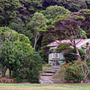 House And Garden Waitamgi Art Print