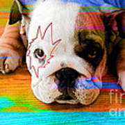 House Broken Bulldog Puppy Art Print