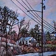 Houses In Pulaski Art Print