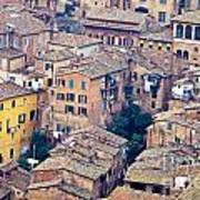 Houses Of Old City Of Siena - Tuscany - Italy - Europe Art Print