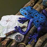 Huckleberry Frog II Art Print