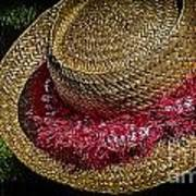 Hula Hats 5 Art Print