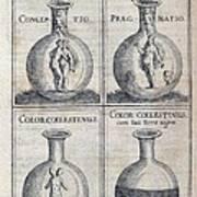 Human Development, 17th Century Artwork Art Print