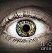 Human Eye Macro Art Print by Elena Elisseeva