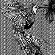 Hummingbird Flight 20 Art Print