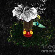 Hummingbird In The Spotlight Print by Al Bourassa