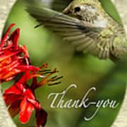 Hummingbird Thanks Art Print