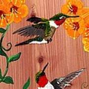 Hummingbirds On Cedar Art Print