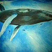 Humpback Whale Art Print by Lucy D