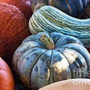 Humungous Edible Gourds Art Print