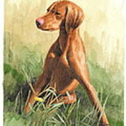 Hunting Dog Puppy Watercolor Portrait Art Print
