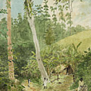 Hut In The Jungle Circa 1816 Print by Aged Pixel