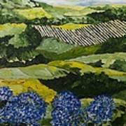 Hydrangea Valley Art Print