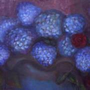 Hydrangeas Art Print by Susan Hanlon