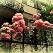 I Never Promised You A Rose Garden Art Print