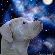 I See The Moon Art Print by Judy Wood