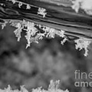 Ice Crystals Frozen In The River Art Print