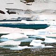 Icebergs In August Glacier International Peace Park Art Print