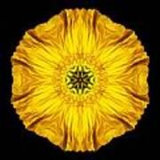 Iceland Poppy Flower Mandala Print by David J Bookbinder