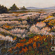 Iceplant And Chaparral Art Print