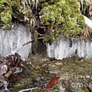 Icicles In The Stream Art Print