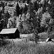 Iconic Cabin  Black And White Art Print