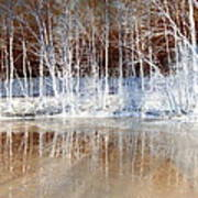 Icy Reflections Art Print