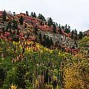 Idaho Colors In Fall Art Print