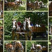 If You Love Belgian Horses Art Print