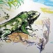 Iguana On Beach Art Print