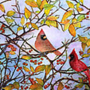 Illinois Cardinals  Art Print