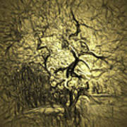 Illusion Tree Art Print