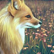 Illustration Of Red Fox Art Print