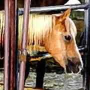 Impressionist Horse Art Print
