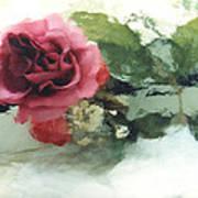 Impressionistic Watercolor Roses, Romantic Watercolor Pink Rose  Art Print
