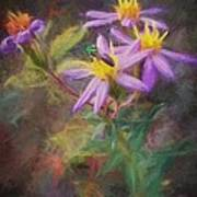 Impressions Of An Aster Art Print