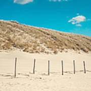 In A Line. Coastal Dunes In Holland Art Print